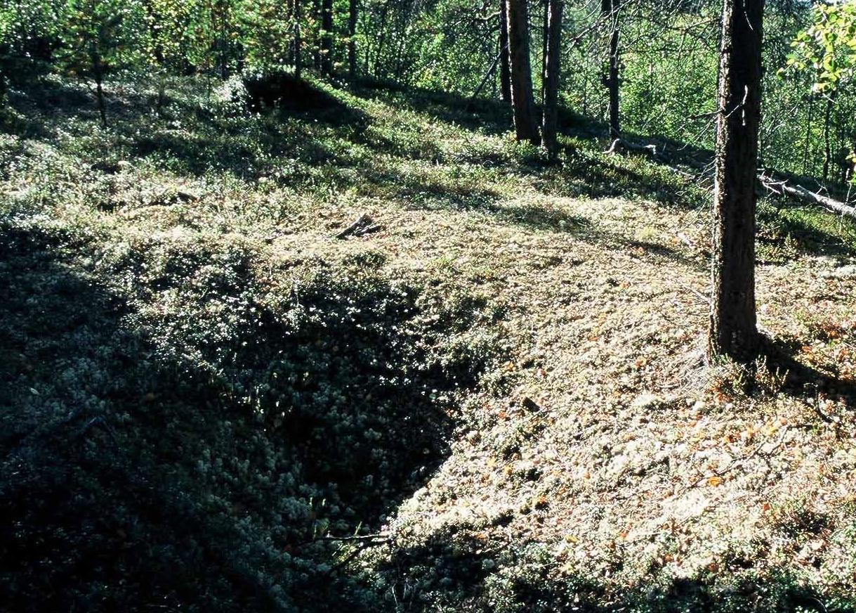 Peurakuoppa Vuontisjärvellä
